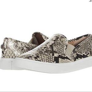 Steve Madden Symba shoes
